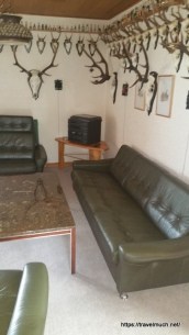 Green leather salon...