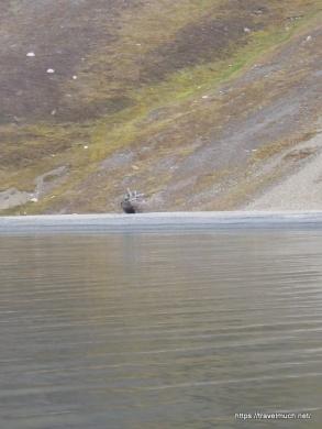 1-1-pyramden-og-nordenskioldbreen-020906-jpg-37