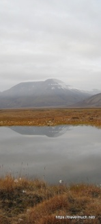 1-a-svalbard-love-story