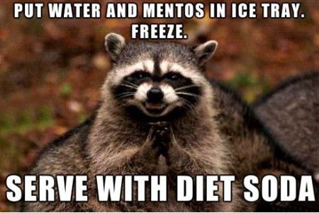 funniest_memes_put-water-and-mentos-is-an-ice-tray_18161